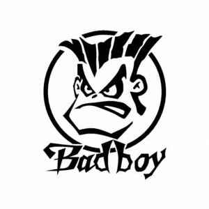 Bad Boy car sticker 3