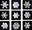 'Snowflake Window Stickers' from the web at 'http://stickers.signprint.co.uk/images/snow.jpg'